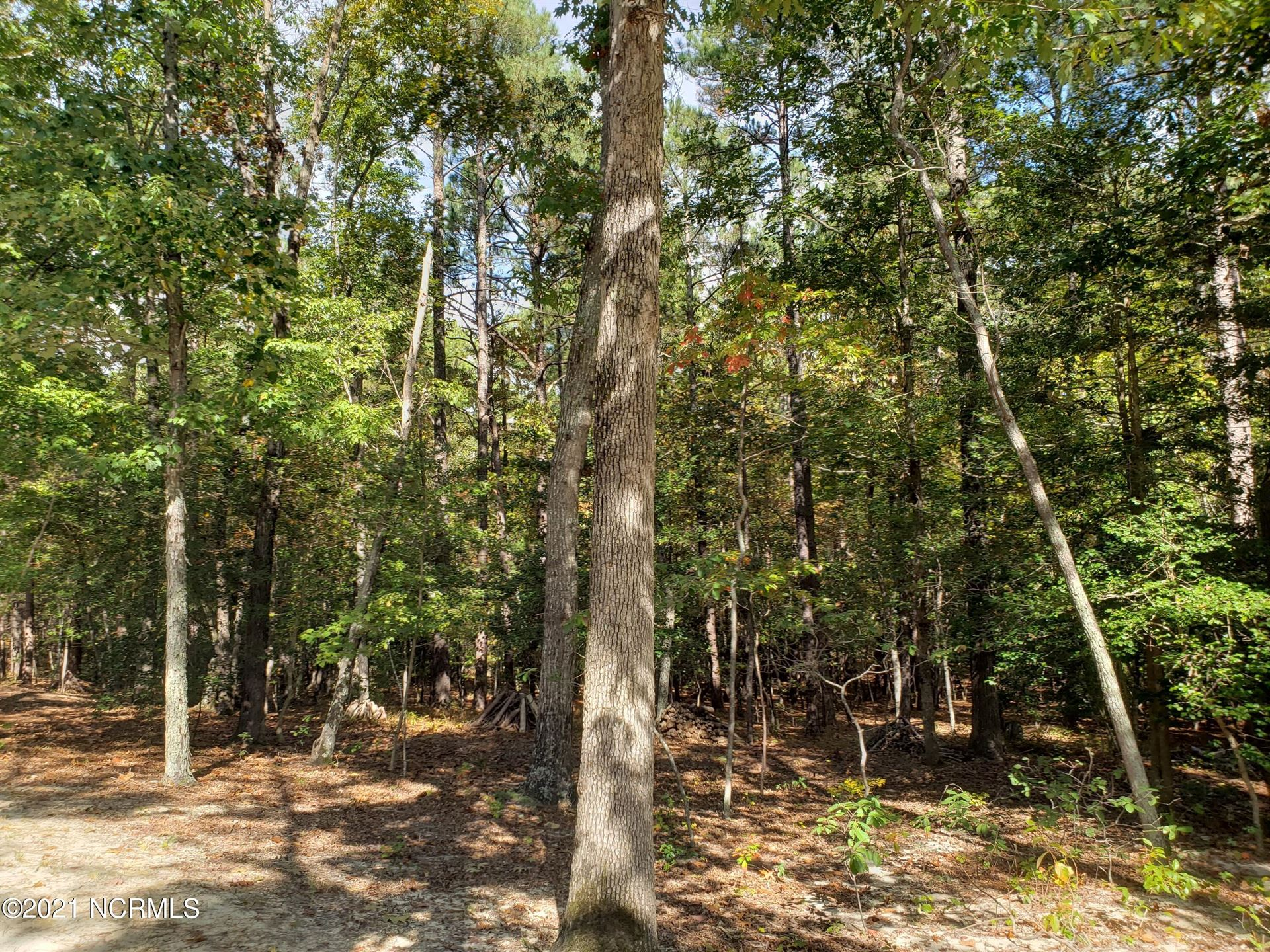 Photo of 680 Holly Grove School Road, West End, NC 27376 (MLS # 100296652)