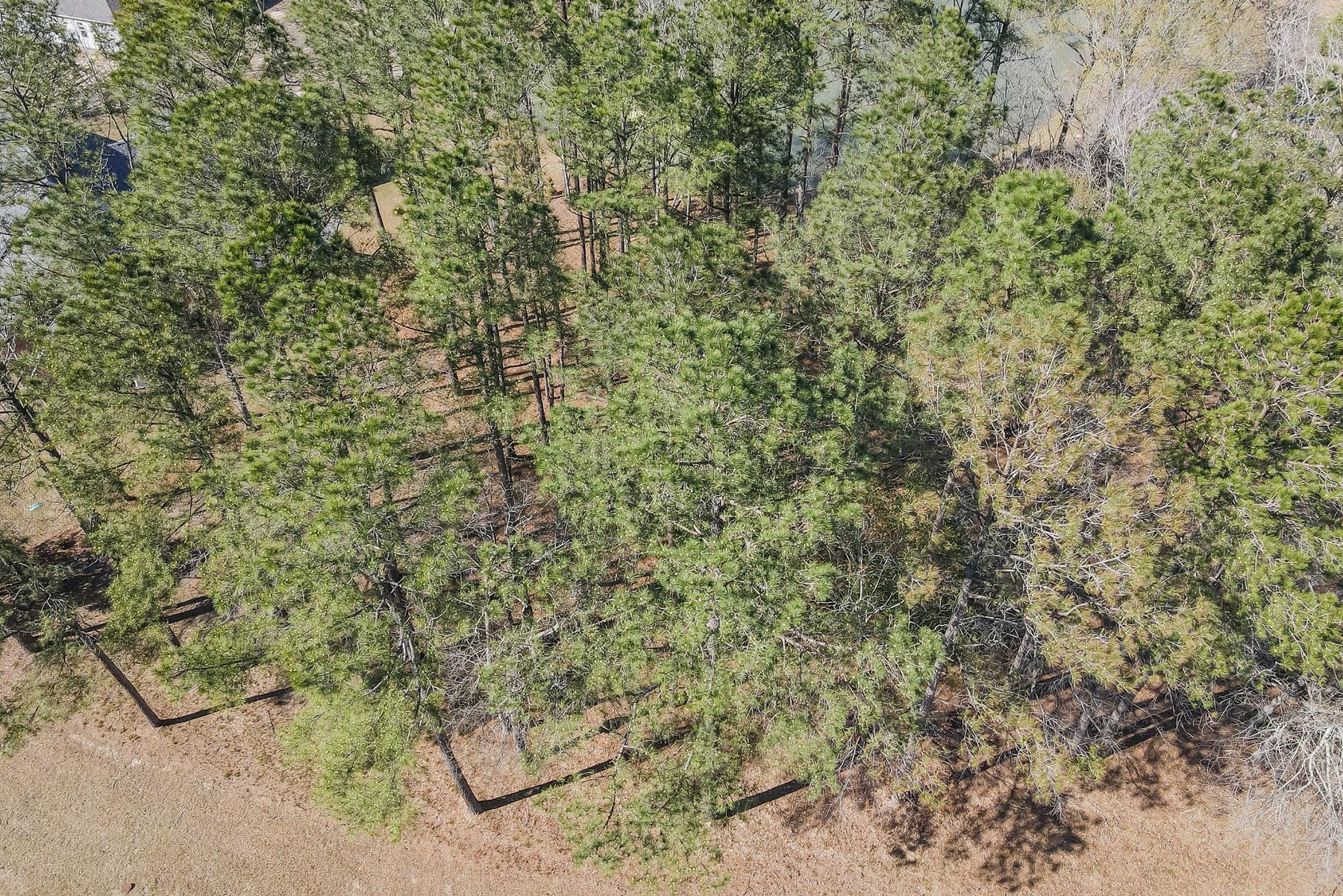 Photo of 417 Cypress Landing Trail, Chocowinity, NC 27817 (MLS # 100263655)