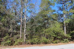 Photo of 105 Beaver Trail, Hubert, NC 28539 (MLS # 100103660)