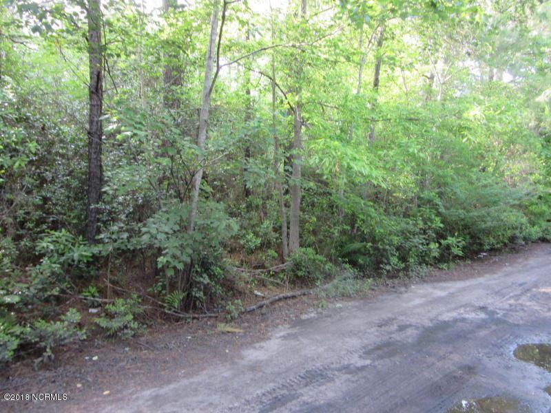Photo for 6820 Wild Magnolia Road, Wilmington, NC 28411 (MLS # 100127673)