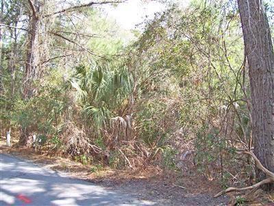 Photo of 10 Sandwich Tern Trail, Bald Head Island, NC 28461 (MLS # 100286678)