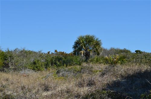 Photo of 721 Shoals Watch Way, Bald Head Island, NC 28461 (MLS # 100271685)
