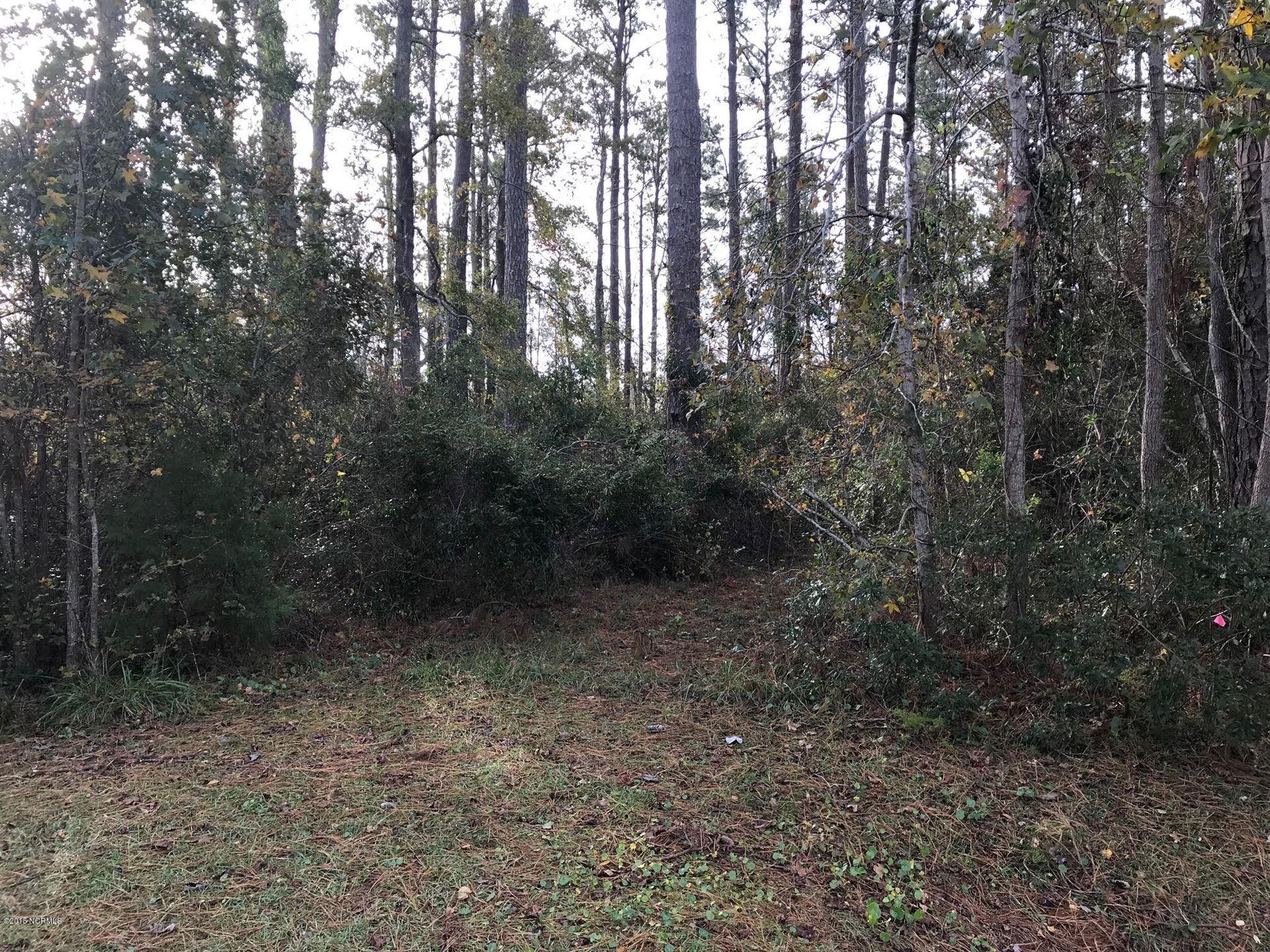 Photo of 137 Cummins Creek Road, Beaufort, NC 28516 (MLS # 100197689)