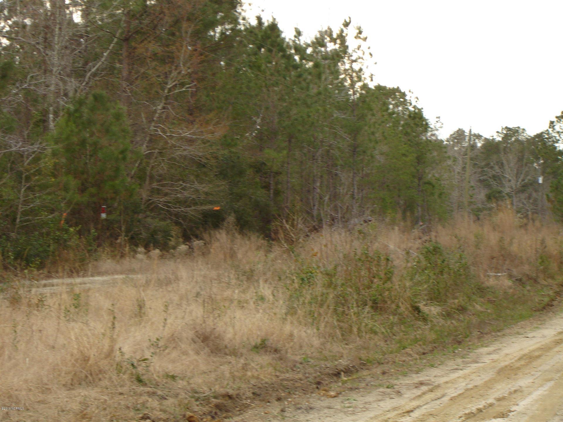 Photo of 4 Sawdust Lane SE, Winnabow, NC 28479 (MLS # 100210691)
