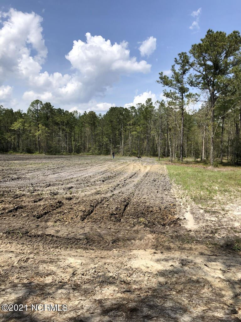 Photo of Lot 2c Hwy 210 Nc, Rocky Point, NC 28457 (MLS # 100294695)