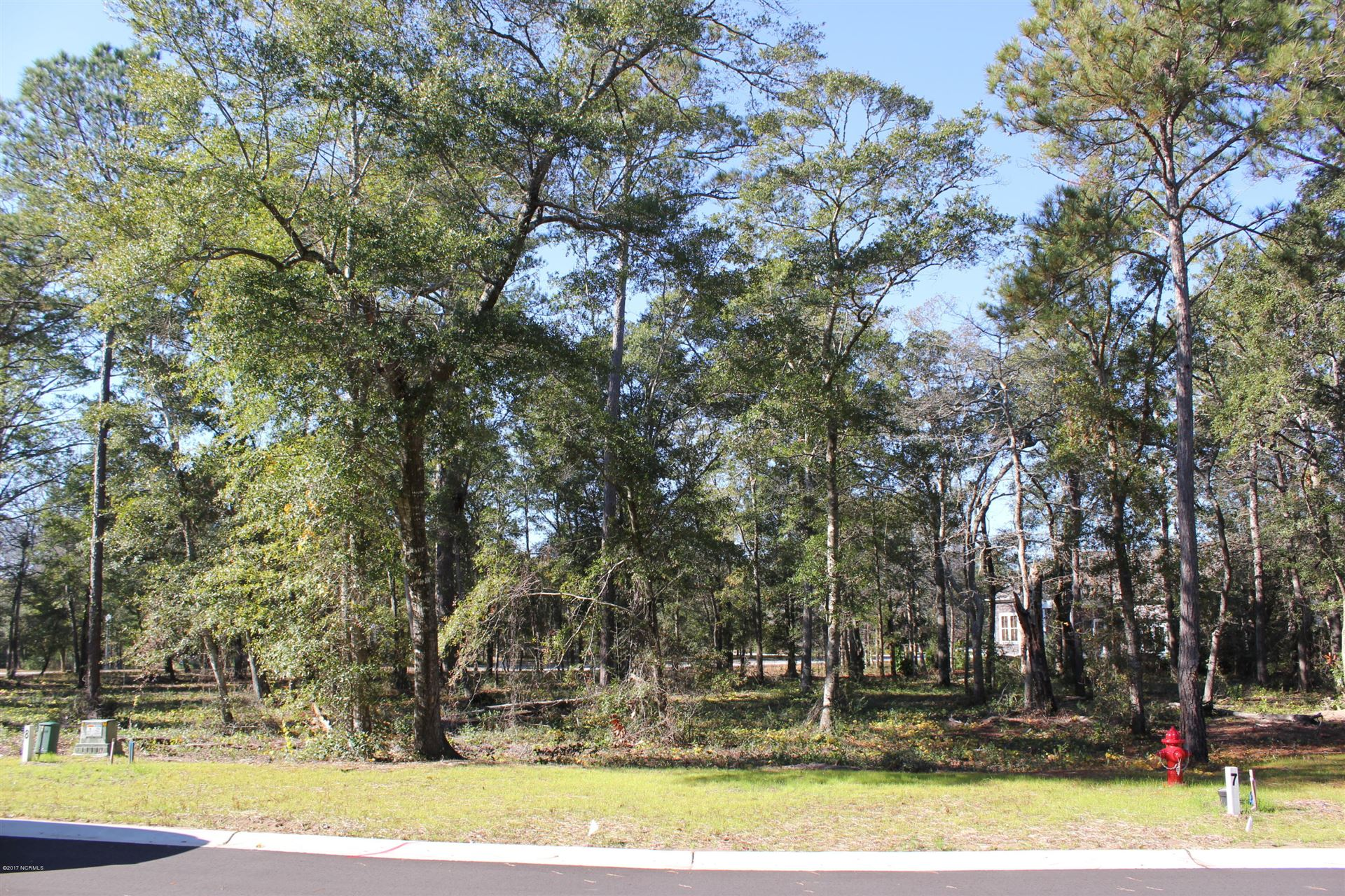Photo of 646 Wild Rose Way, Southport, NC 28461 (MLS # 100092701)