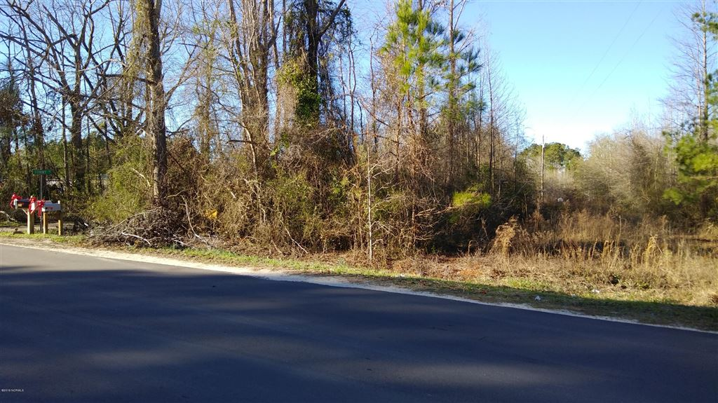Photo of Lot 28 Big Four Road, Currie, NC 28435 (MLS # 100146702)