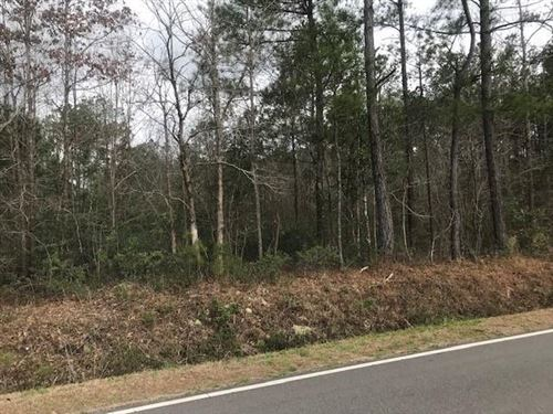 Photo of 0 Slocum Road, Atkinson, NC 28421 (MLS # 100263705)