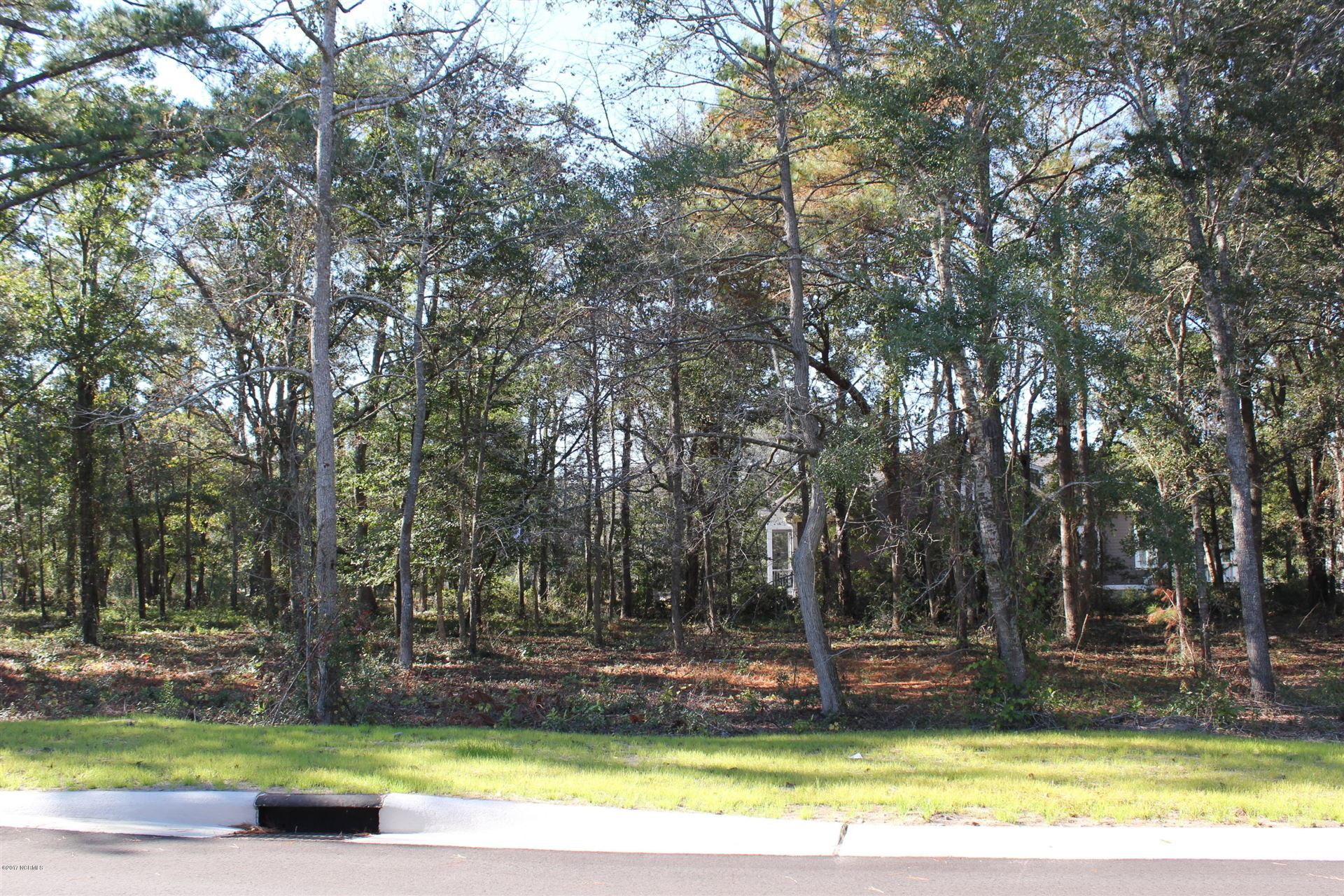 Photo of 654 Wild Rose Way, Southport, NC 28461 (MLS # 100092709)