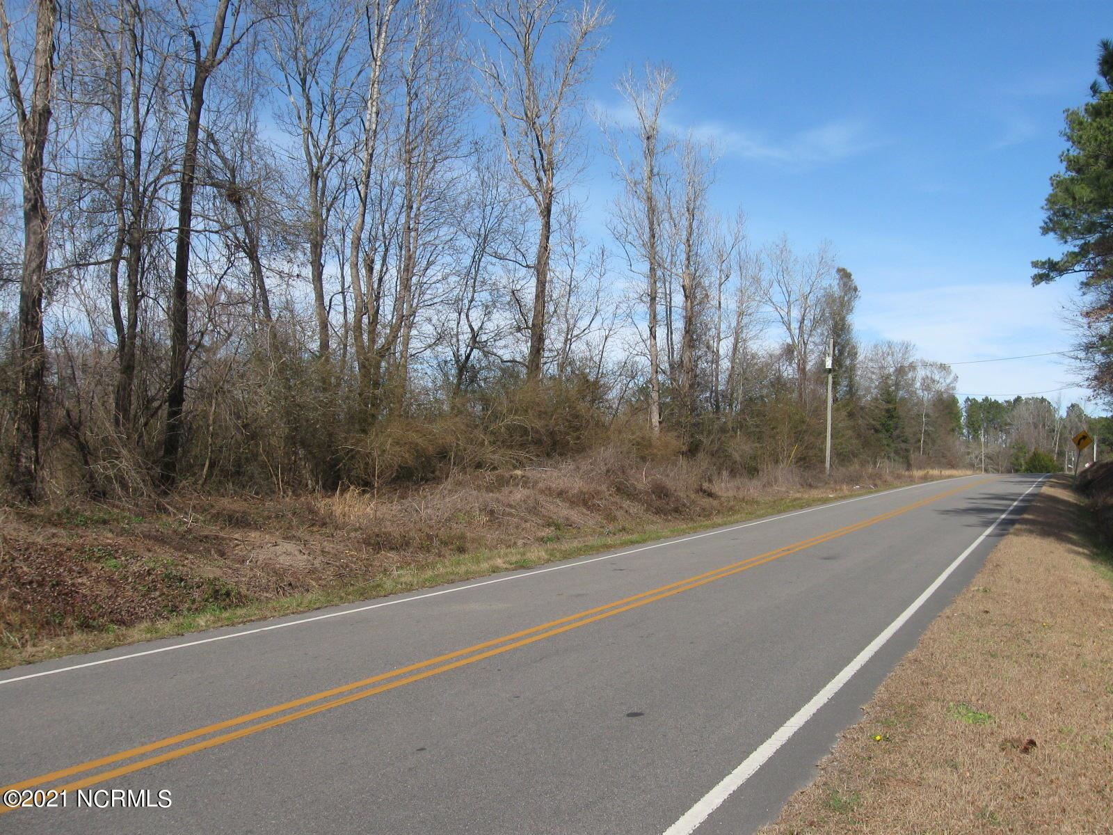 Photo of 1 Point Caswell Road, Atkinson, NC 28421 (MLS # 100259711)