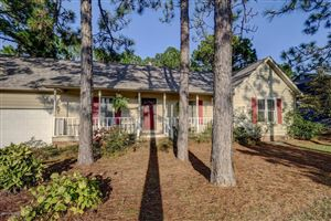 Photo of 201 Love Grass Court, Wilmington, NC 28405 (MLS # 100184713)