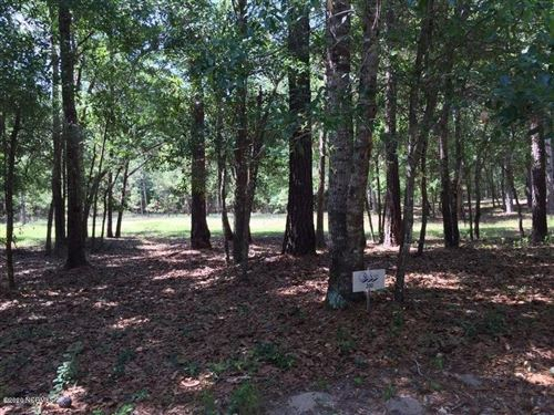 Photo of 513 Nantes Court SW, Supply, NC 28462 (MLS # 100199718)
