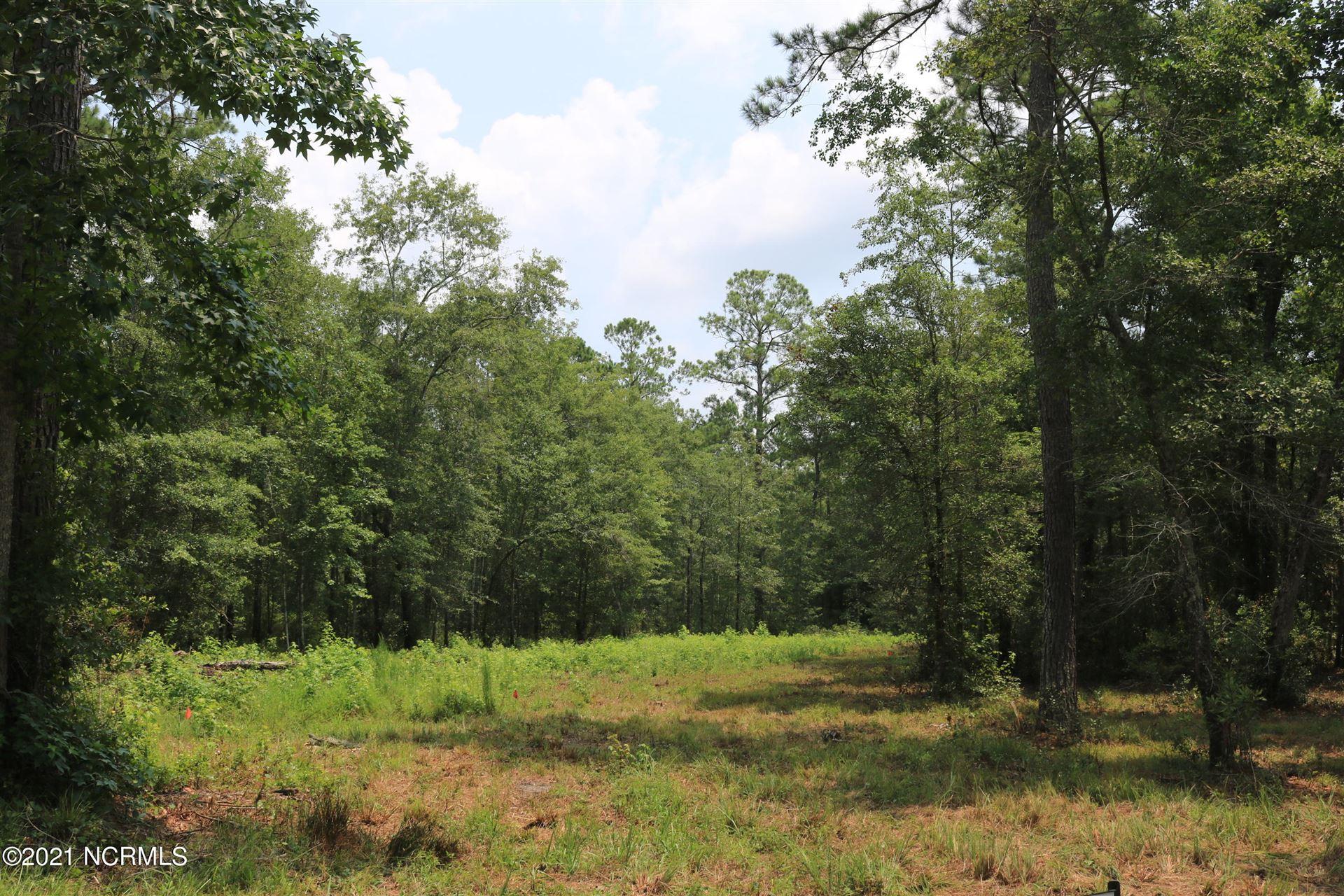 Photo of 6656 Mossey Run Drive NE, Leland, NC 28451 (MLS # 100282719)