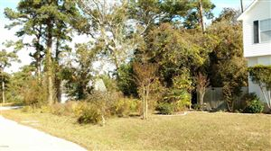 Photo of 1014 Meridian Drive, Sneads Ferry, NC 28460 (MLS # 40207720)
