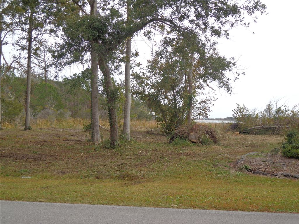 Photo of 1065 Chadwick Shores Drive, Sneads Ferry, NC 28460 (MLS # 100183720)