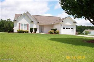 Photo of 157 Bernice Blanton, Teachey, NC 28464 (MLS # 100168721)