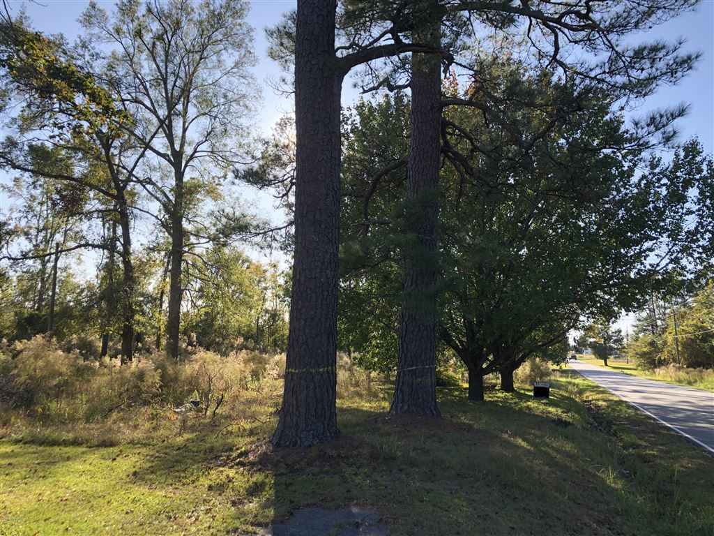 Photo of 2607 White Oak River Road, Maysville, NC 28555 (MLS # 100134722)