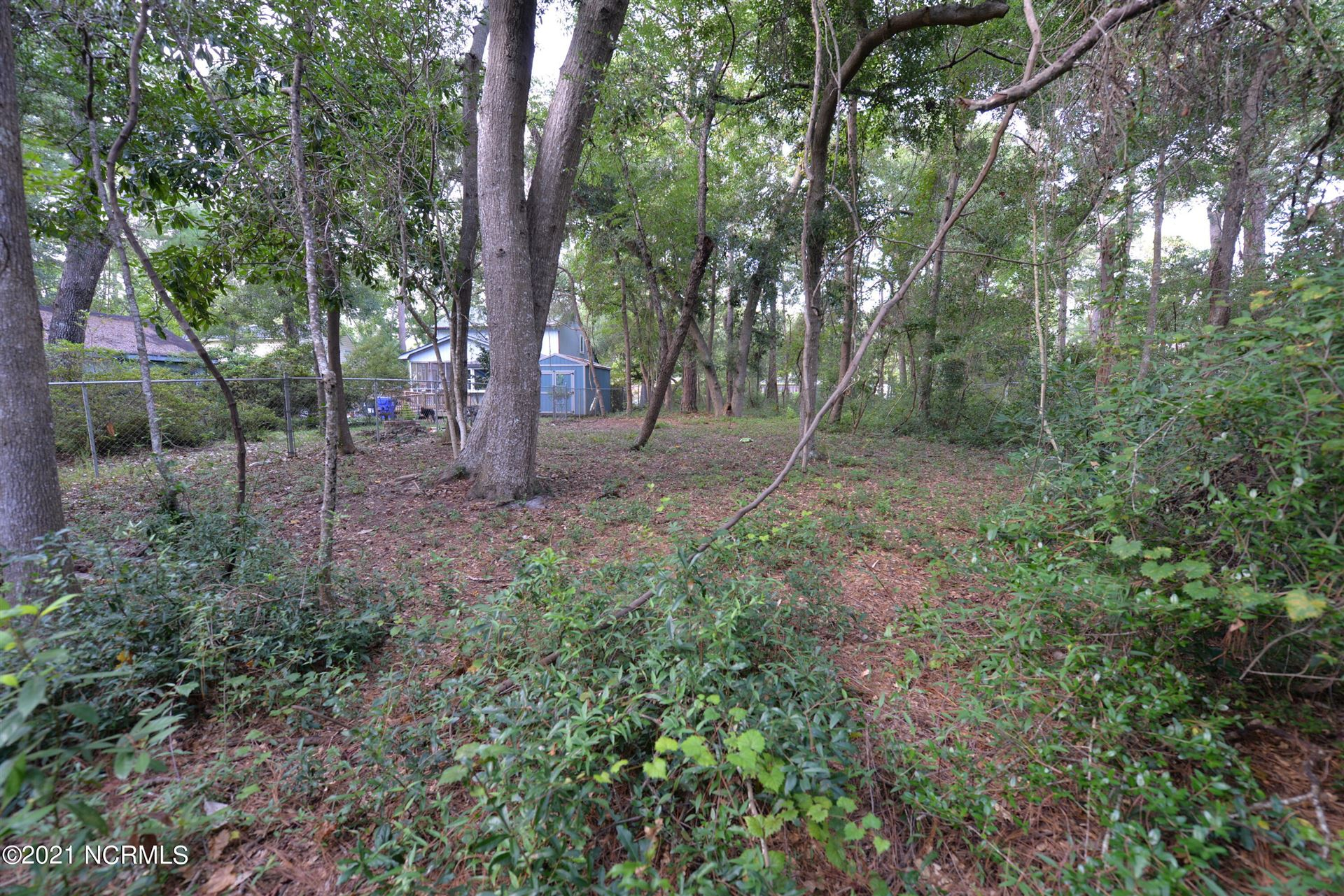 Photo of 209 Park Ave Ext, Southport, NC 28461 (MLS # 100288726)