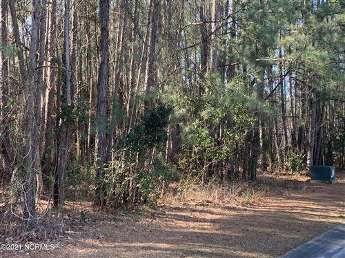 Photo of 311 River Ridge Drive, Wallace, NC 28466 (MLS # 100259731)