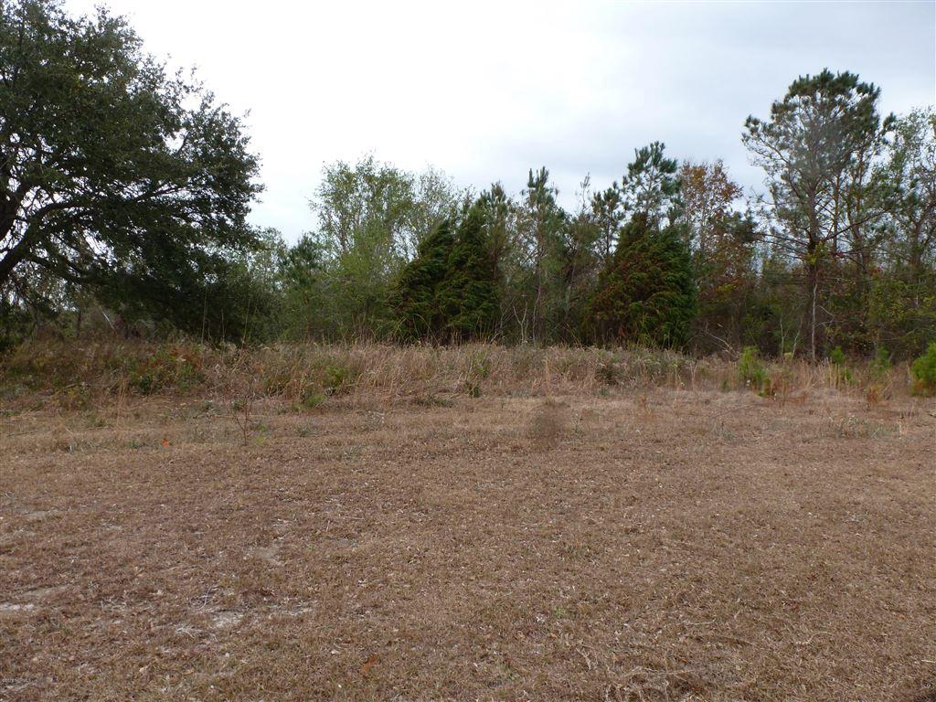 Photo of 100 Elizabeth Way Court, Swansboro, NC 28584 (MLS # 100143731)