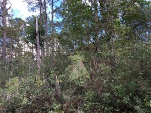 Photo of 73,74,75 Robin Road, Southport, NC 28461 (MLS # 100188733)