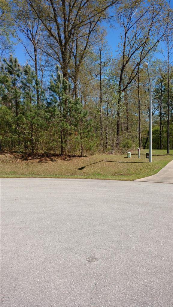 Photo of 148 Farmington Drive, Richlands, NC 28574 (MLS # 100056735)