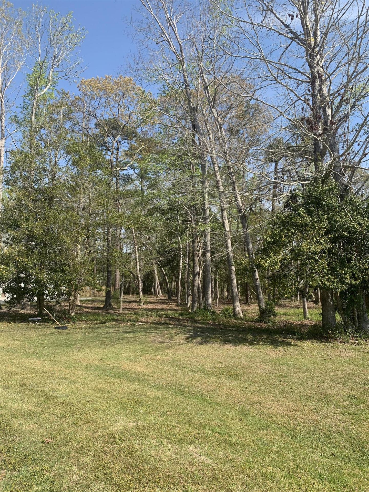 Photo for 332 Osprey Point Drive, Sneads Ferry, NC 28460 (MLS # 100265735)