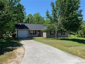 Photo of 227 Chaparral Trail, Jacksonville, NC 28546 (MLS # 100164736)