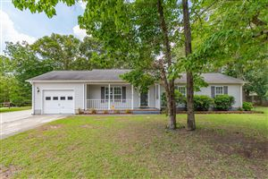 Photo of 222 Chappell Creek Court, Richlands, NC 28574 (MLS # 100175743)