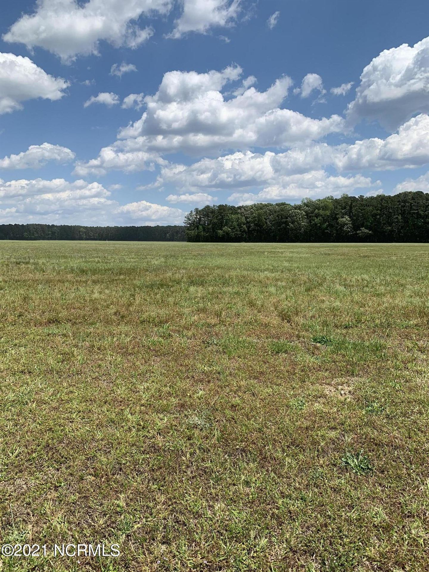 Photo of 28 Winfield Lane, Pinetown, NC 27865 (MLS # 100270743)