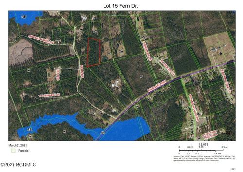 Photo of Tbd Fern Drive, Maple Hill, NC 28454 (MLS # 100259745)