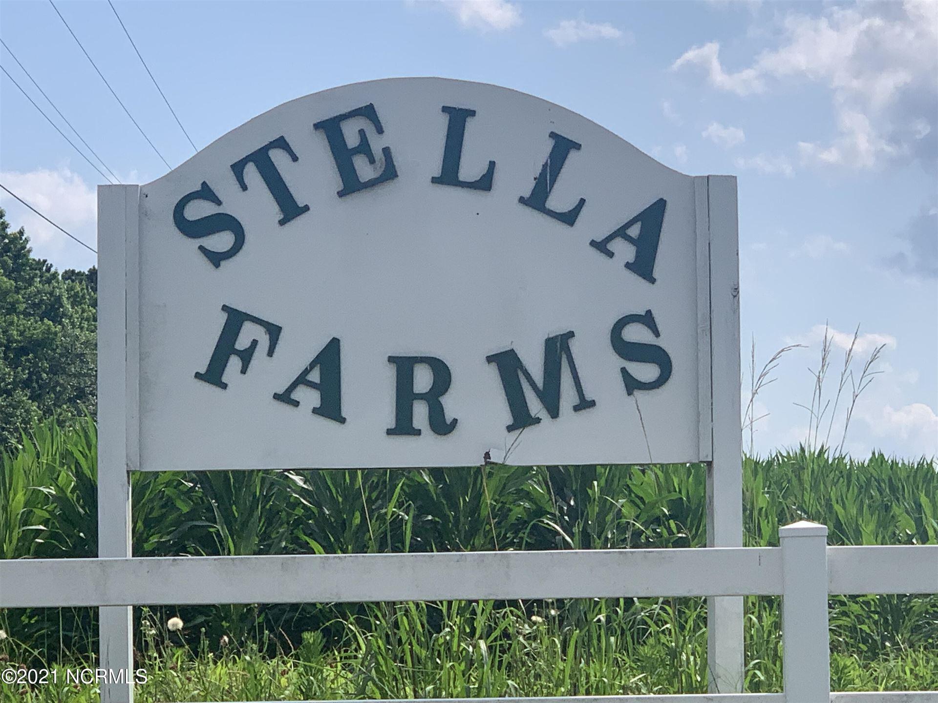 Photo of 103 Lily Court, Stella, NC 28582 (MLS # 100277749)