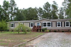 Photo of 218 Paige Hall Court, Rocky Point, NC 28457 (MLS # 100170753)