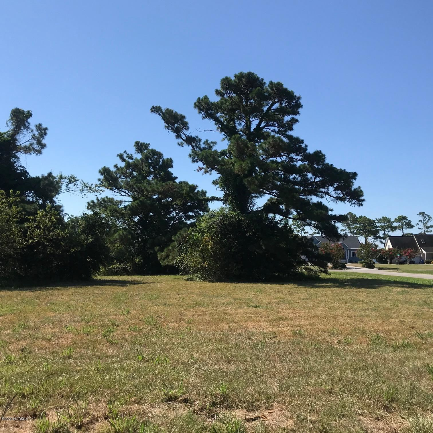 Photo of 6037 Dolphin Road, Oriental, NC 28571 (MLS # 100228755)