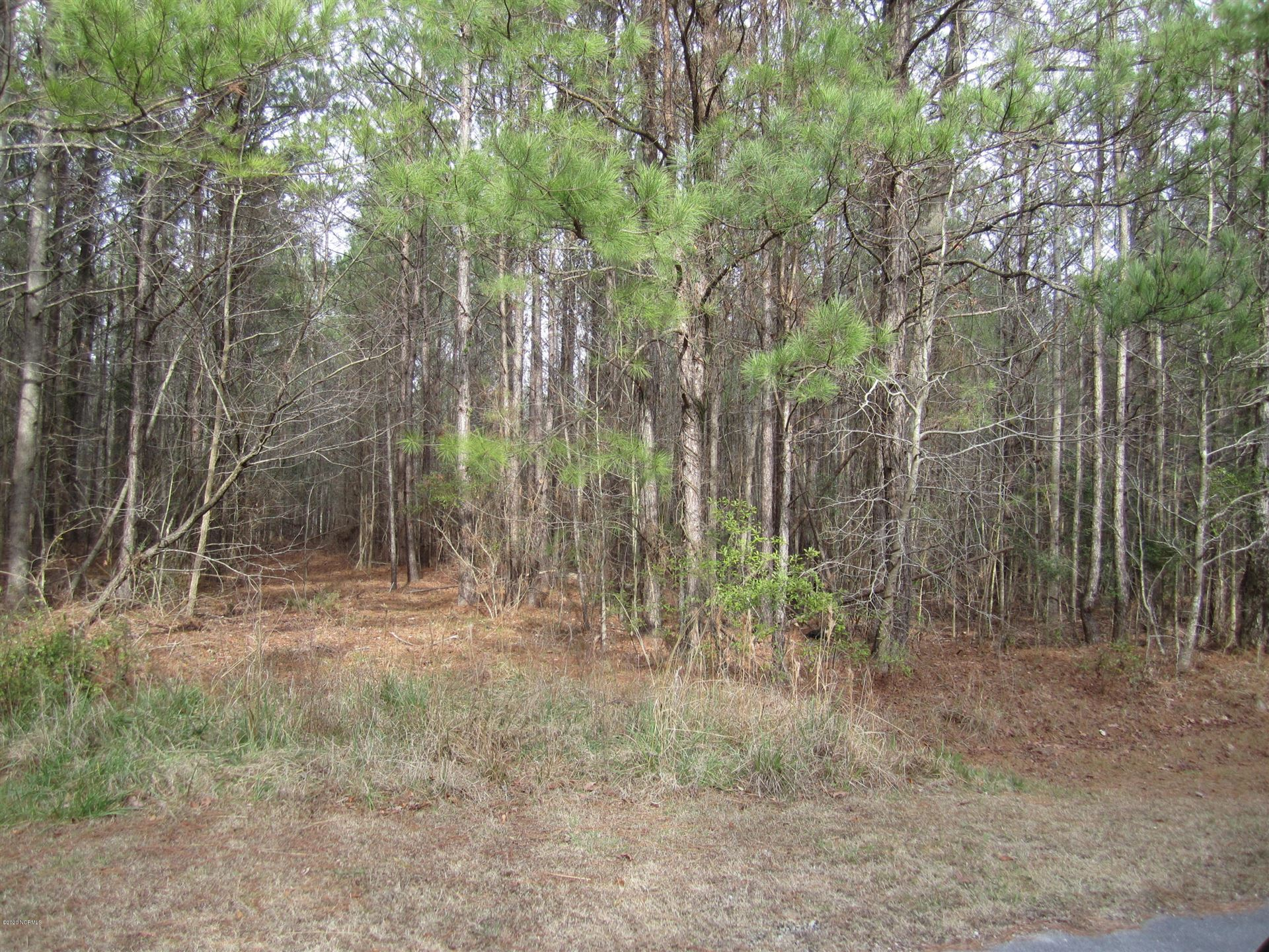 Photo of Lot 88 State Rd 1115 Off, Chocowinity, NC 27817 (MLS # 100201760)