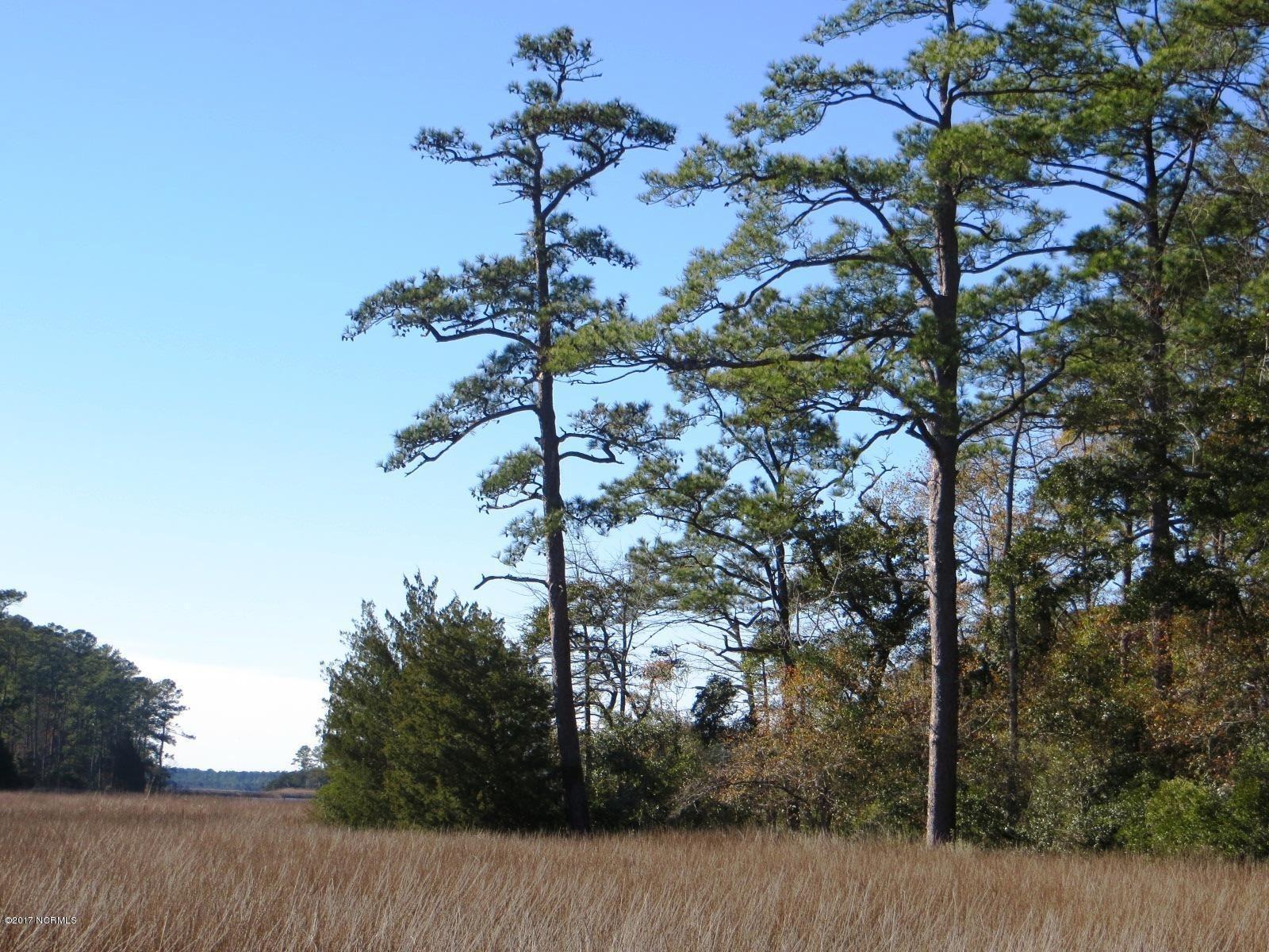 Photo of 139 Cummins Creek Road, Beaufort, NC 28516 (MLS # 100041766)