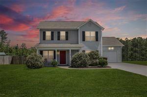 Photo of 118 Blossom Court, Maple Hill, NC 28454 (MLS # 100166767)