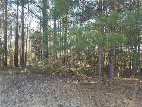 Photo of 204 Winding Creek Road, Rocky Point, NC 28457 (MLS # 100237774)