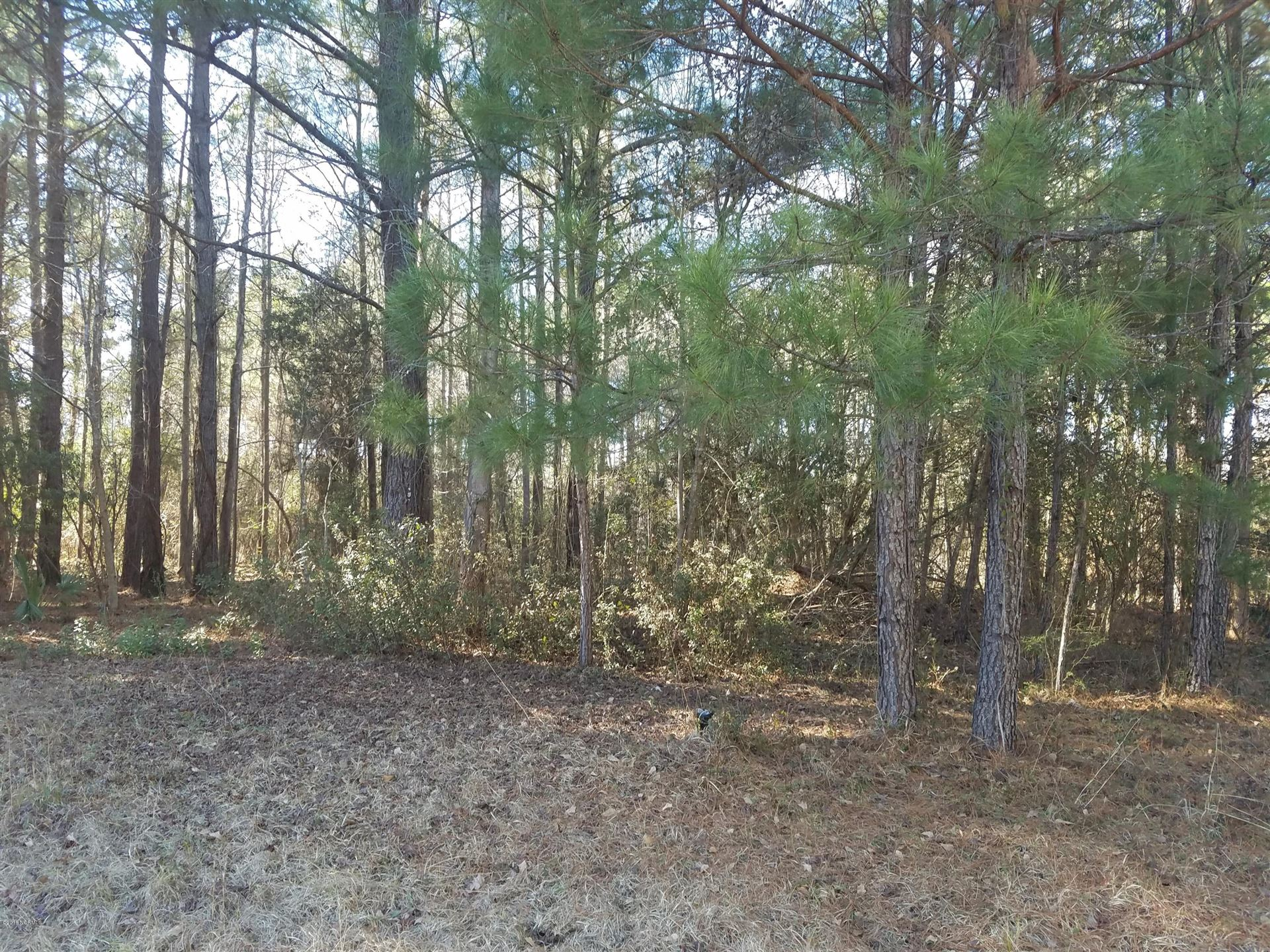 Photo for 204 Winding Creek Road, Rocky Point, NC 28457 (MLS # 100237774)