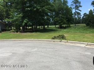 Tiny photo for 4206 Sienna Place, New Bern, NC 28562 (MLS # 100063776)