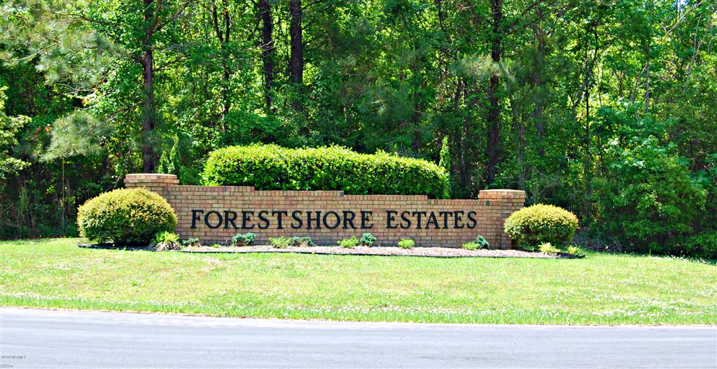 Photo of Lot 25 Forest Drive, Oriental, NC 28571 (MLS # 100162800)