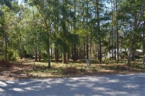 Photo of 109 Park Avenue, Southport, NC 28461 (MLS # 100189801)