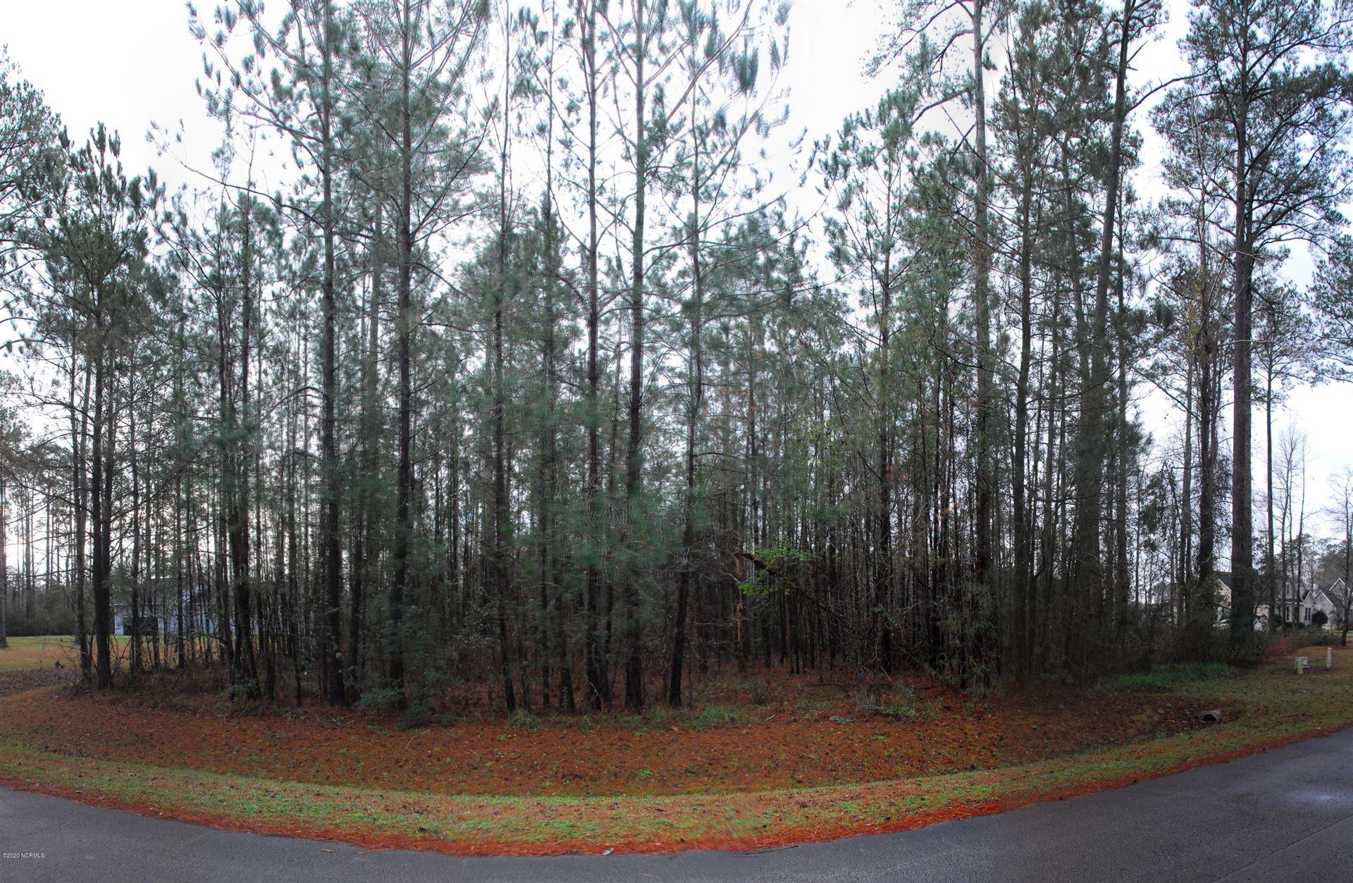 Photo of 143 Cummins Creek Road, Beaufort, NC 28516 (MLS # 100204801)