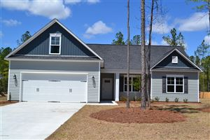 Photo of 217 Bronze Drive, Rocky Point, NC 28457 (MLS # 100134803)