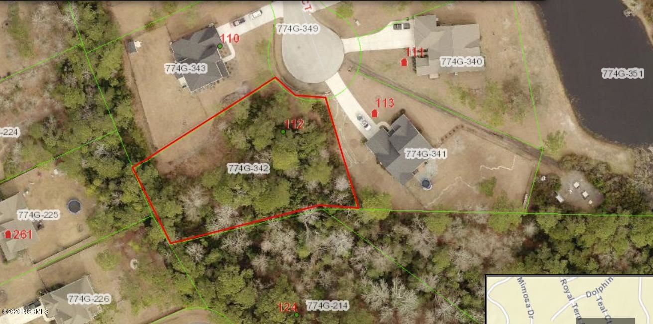 Photo of 112 Teal Court, Sneads Ferry, NC 28460 (MLS # 100177813)
