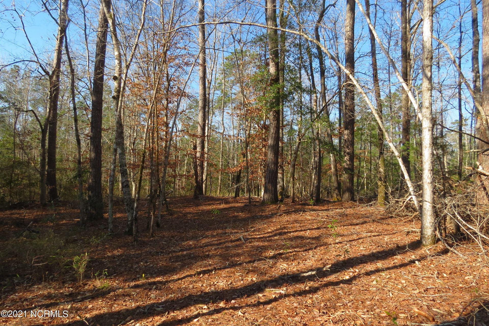 Photo of 42 Winding Creek Drive, Oriental, NC 28571 (MLS # 100258816)