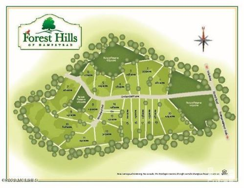 Photo of 256 Orchard Mill Road, Hampstead, NC 28443 (MLS # 100199817)