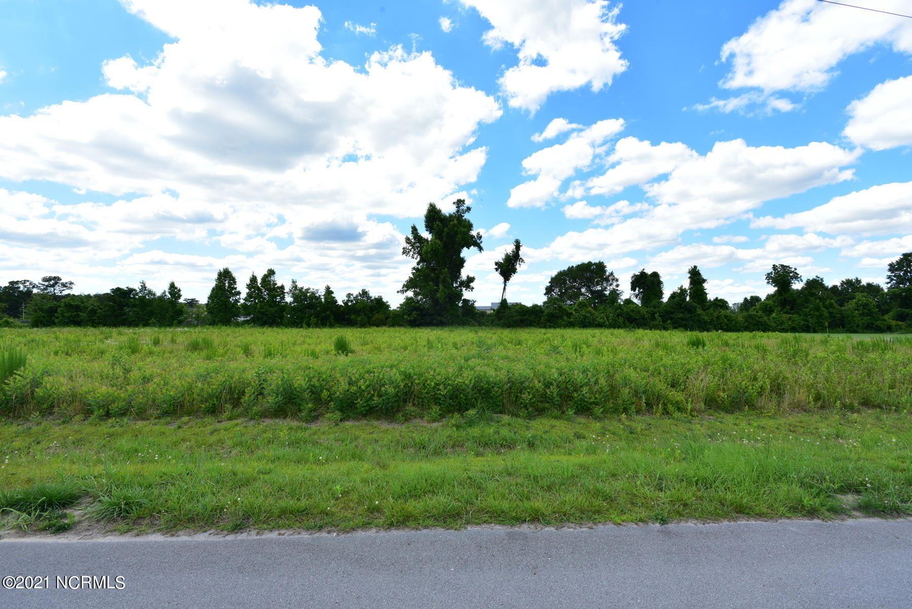 Photo of 100 Adams Landing Way, Maysville, NC 28555 (MLS # 100278829)