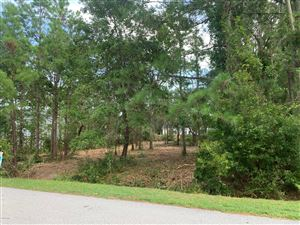 Photo of 434 Chadwick Shores Drive, Sneads Ferry, NC 28460 (MLS # 100172830)