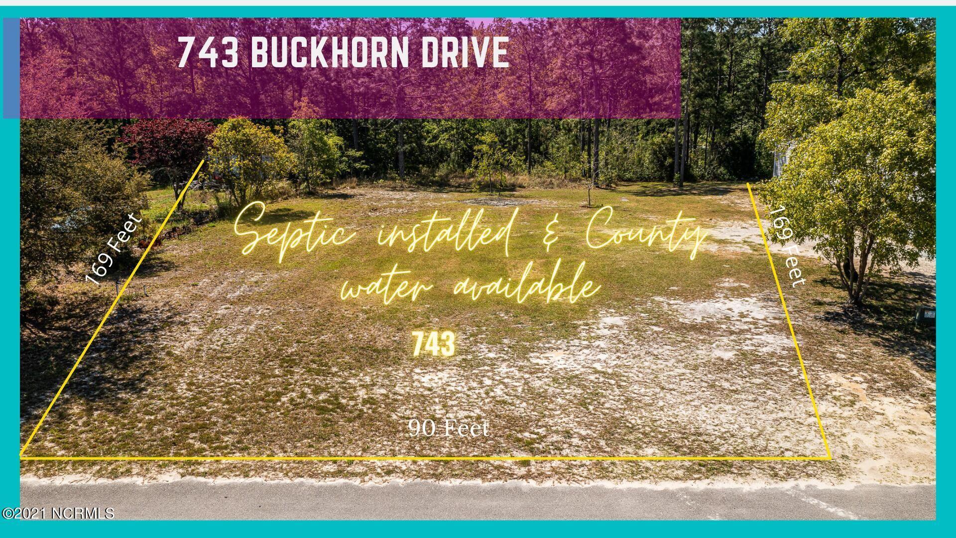 Photo of 743 Buckhorn Drive SW, Supply, NC 28462 (MLS # 100291831)